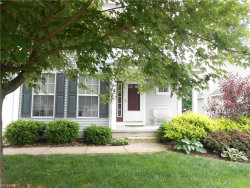 Photo of 1384 Timber Trail, Twinsburg, OH 44236 (MLS # 4009799)