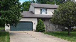 Photo of 3421 Forty Second St, Canfield, OH 44406 (MLS # 4011291)
