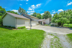 Photo of 5032 Streeter Rd, Mantua, OH 44255 (MLS # 4014276)