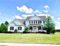 Photo of 33 Lake Wobegon Dr, Canfield, OH 44406 (MLS # 4014821)