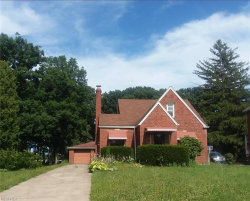 Photo of 153 South Hazelwood Ave, Youngstown, OH 44509 (MLS # 4017897)