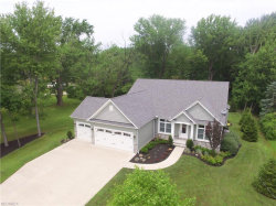Photo of 10215 Brian Dr, Concord, OH 44077 (MLS # 4018045)