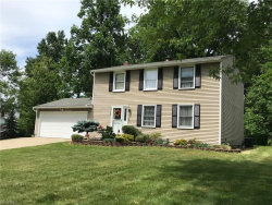 Photo of 9709 Fox Hill Trl, Concord, OH 44060 (MLS # 4019488)