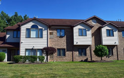 Photo of 7281 Village Dr, Concord, OH 44060 (MLS # 4020617)
