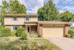 Photo of 9013 Birchwood Dr, Twinsburg, OH 44087 (MLS # 4020985)