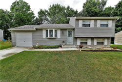 Photo of 4758 Algonquin Trl, Stow, OH 44224 (MLS # 4026176)
