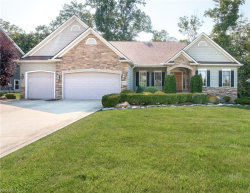 Photo of 7926 Butterfly St, Concord, OH 44077 (MLS # 4026422)