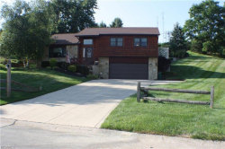 Photo of 6182 Colleen Dr, Concord, OH 44077 (MLS # 4026954)