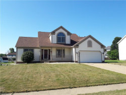 Photo of 3180 Pine Hollow Dr, Ravenna, OH 44266 (MLS # 4026974)