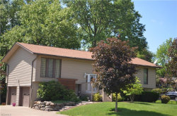 Photo of 3920 Greentree Rd, Stow, OH 44224 (MLS # 4027045)