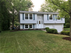 Photo of 4252 Hile Rd, Stow, OH 44224 (MLS # 4027300)