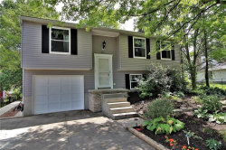 Photo of 5511 Young Rd, Stow, OH 44224 (MLS # 4028071)