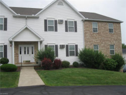 Photo of 3635 Indian Run Dr, Unit 4, Canfield, OH 44406 (MLS # 4028451)