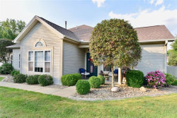 Photo of 5645 Clingan Rd, Unit 5B, Poland, OH 44471 (MLS # 4028929)