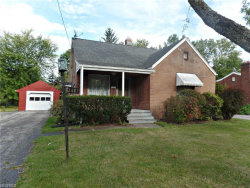 Photo of 3483 Hadley Ave, Youngstown, OH 44505 (MLS # 4029179)