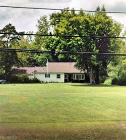 Photo of 490 North Broad St, Canfield, OH 44406 (MLS # 4030498)