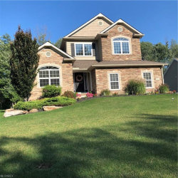 Photo of 8355 Raleigh St, Concord, OH 44077 (MLS # 4032739)