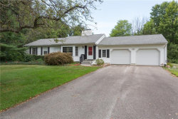 Photo of 10581 Clearlake Dr, Concord, OH 44077 (MLS # 4032856)