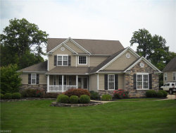 Photo of 11463 Viceroy St, Concord, OH 44077 (MLS # 4033716)