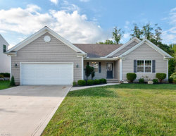 Photo of 11244 Alexa Dr, Concord, OH 44077 (MLS # 4034364)