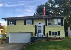 Photo of 3624 High Meadow Dr, Canfield, OH 44406 (MLS # 4036966)
