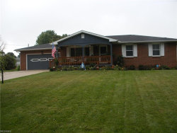Photo of 665 Penhale Ave, Campbell, OH 44405 (MLS # 4036991)
