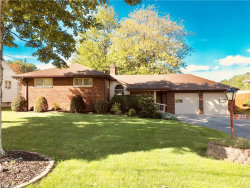 Photo of 822 Almasy Dr, Campbell, OH 44405 (MLS # 4039347)