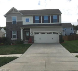 Photo of 3152 Liberty Ledges Dr, Twinsburg, OH 44087 (MLS # 4039884)