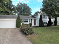Photo of 9933 Cynthia Dr, Twinsburg, OH 44087 (MLS # 4040592)