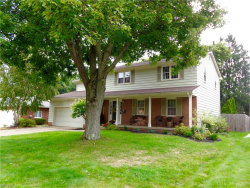 Photo of 8039 Forest Lake Dr, Boardman, OH 44512 (MLS # 4042417)