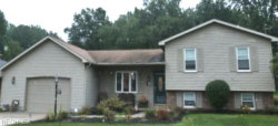 Photo of 805 Sanderson Ave, Campbell, OH 44405 (MLS # 4042567)