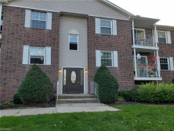 Photo of 10790 Ravenna Rd, Unit 304, Twinsburg, OH 44087 (MLS # 4043166)