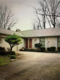 Photo of 443 Hickory Hollow Dr, Canfield, OH 44406 (MLS # 4044682)