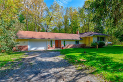 Photo of 18389 Geauga Lake Rd, Chagrin Falls, OH 44023 (MLS # 4044723)