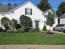 Photo of 1871 Village Ct, Unit 56, Stow, OH 44224 (MLS # 4045809)