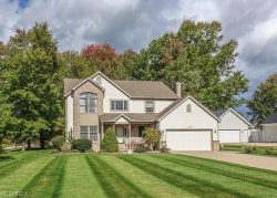 Photo of 1149 Park Ledge Dr, Macedonia, OH 44056 (MLS # 4046477)