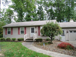 Photo of 253 South Inglewood Ave, Austintown, OH 44515 (MLS # 4047090)