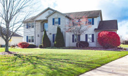Photo of 9880 Cherry Hills Dr, Canfield, OH 44406 (MLS # 4051488)