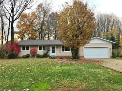 Photo of 6425 Hopkins Rd, Mentor, OH 44060 (MLS # 4052034)
