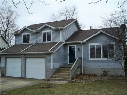 Photo of 1130 Shawnee Trail, Streetsboro, OH 44241 (MLS # 4053169)