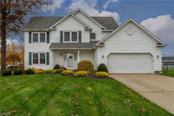Photo of 6847 Chablis Ct, Mentor, OH 44060 (MLS # 4053352)