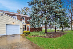 Photo of 22 New Concord Dr, Mentor, OH 44060 (MLS # 4053729)
