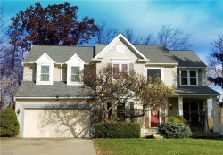 Photo of 2849 Sikes Ln, Twinsburg, OH 44087 (MLS # 4054038)