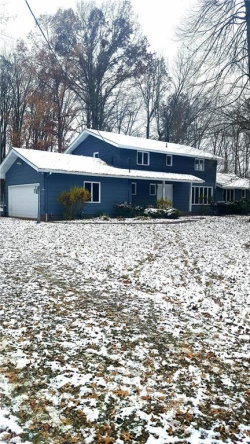 Photo of 4894 Woodview Rd, Ravenna, OH 44266 (MLS # 4054553)