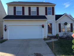 Photo of 10141 Ravenwood Ct, Streetsboro, OH 44241 (MLS # 4058131)