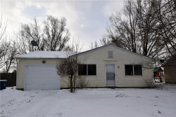 Photo of 9918 Green Dr, Windham, OH 44288 (MLS # 4058720)