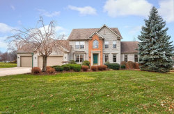 Photo of 11393 Somerset Trl, Concord, OH 44077 (MLS # 4059550)