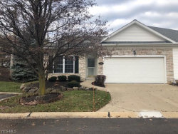 Photo of 19 High Point Ln, Willoughby, OH 44094 (MLS # 4059941)