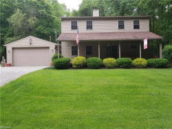 Photo of 2898 Dock Side Dr, Lake Milton, OH 44429 (MLS # 4060011)