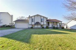 Photo of 3284 Meanderwood Dr, Canfield, OH 44406 (MLS # 4060402)